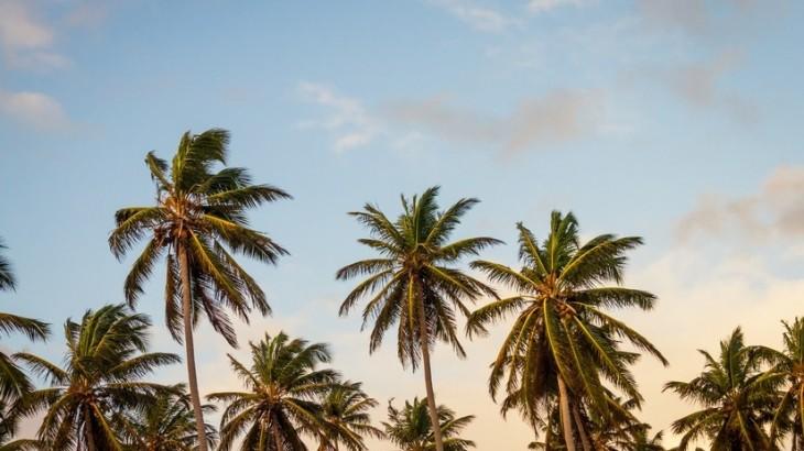 sky-beach-vacation-summer-large