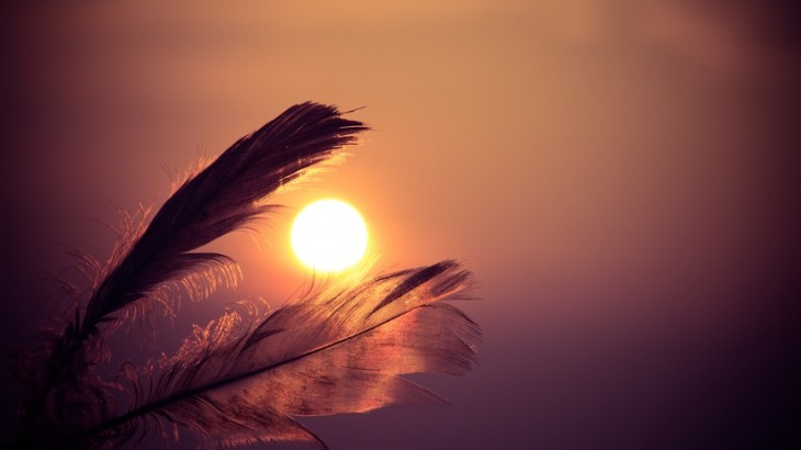 sunset-feathers-large