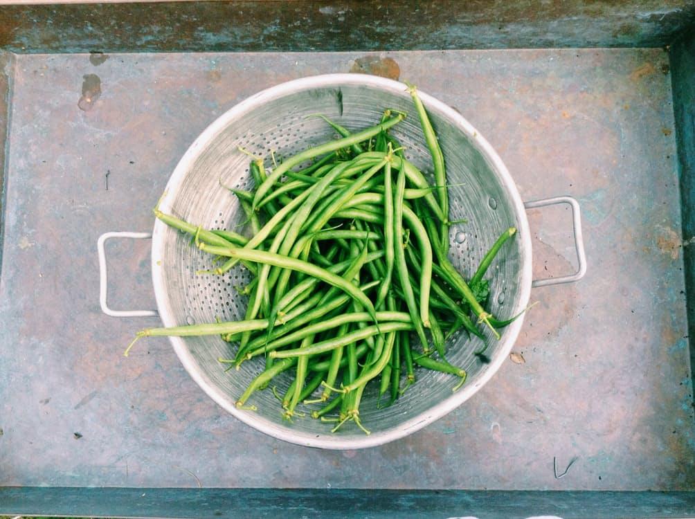 food-healthy-summer-green